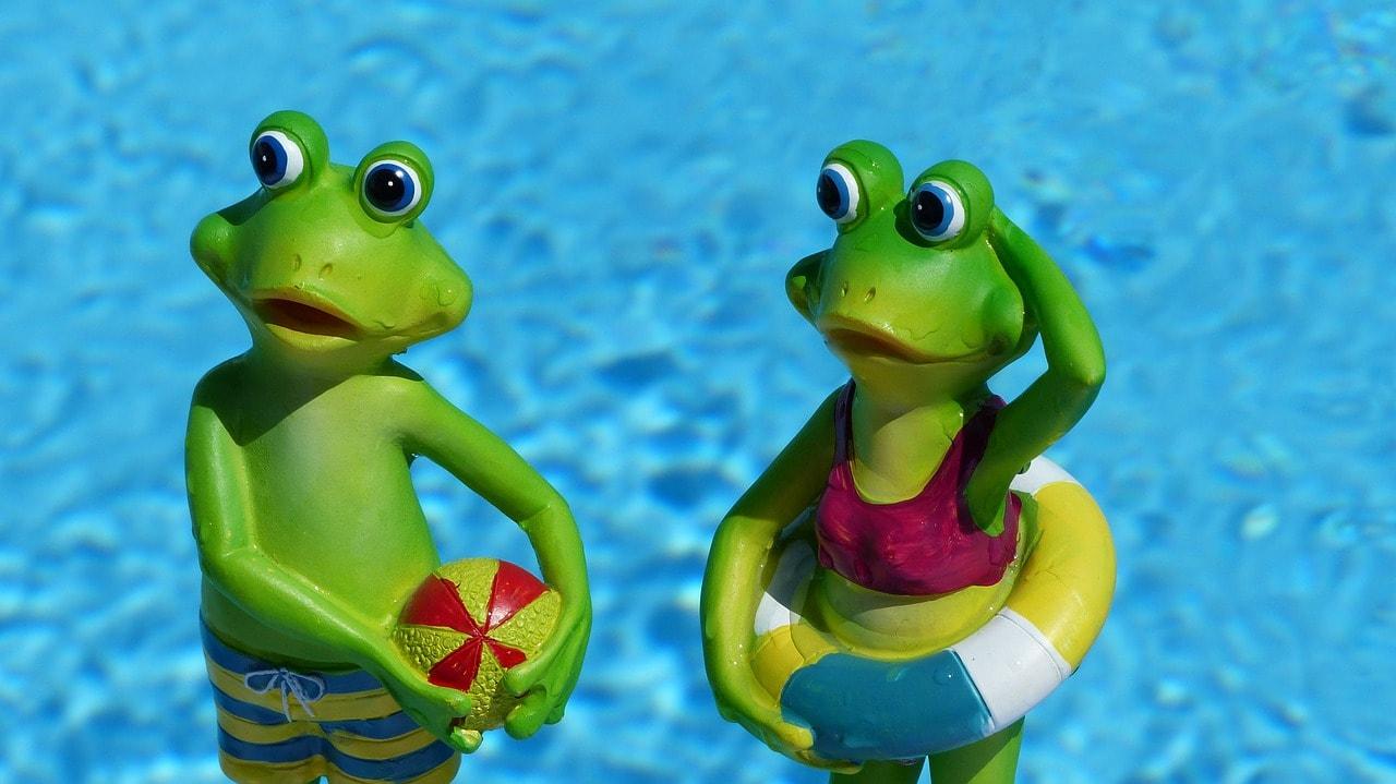 frog-830869_1280